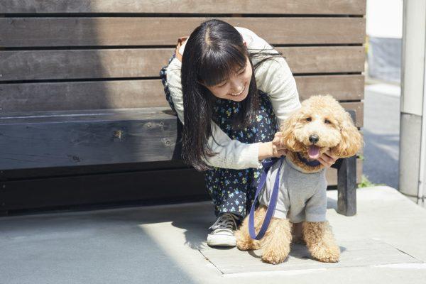 愛犬の快適ライフは健康な地肌から